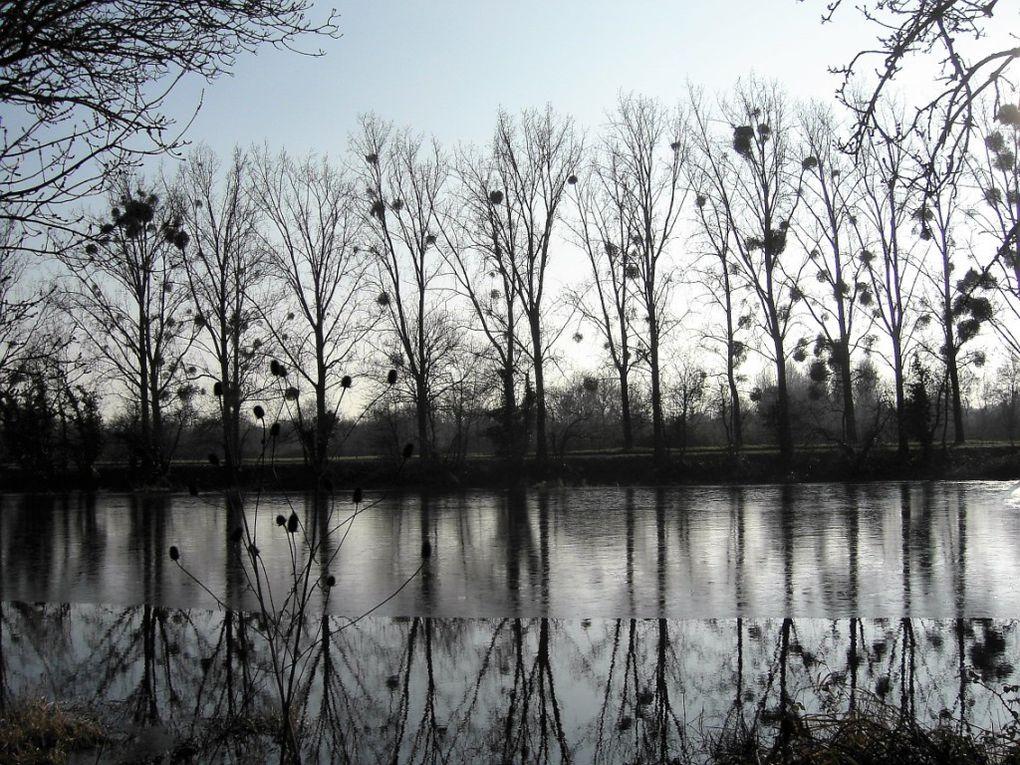 Les &quot&#x3B;6 km&quot&#x3B; au Canal de la Martinière