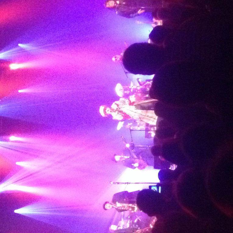 Diaporama de photos du concert du 9 avril 2014 au Casino de Paris! (crédits photo Didier Pezant)