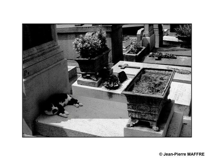 Une étape incontournable pour qui souhaite bien connaître Paris. On y rencontre les personnages qui ont rempli nos livres d'histoire.