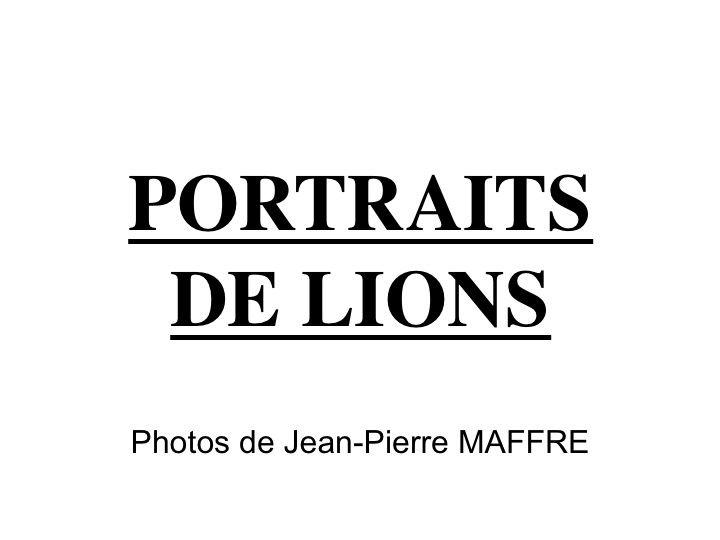 Voici une série de portraits de sa majesté le lion et de sa compagne.