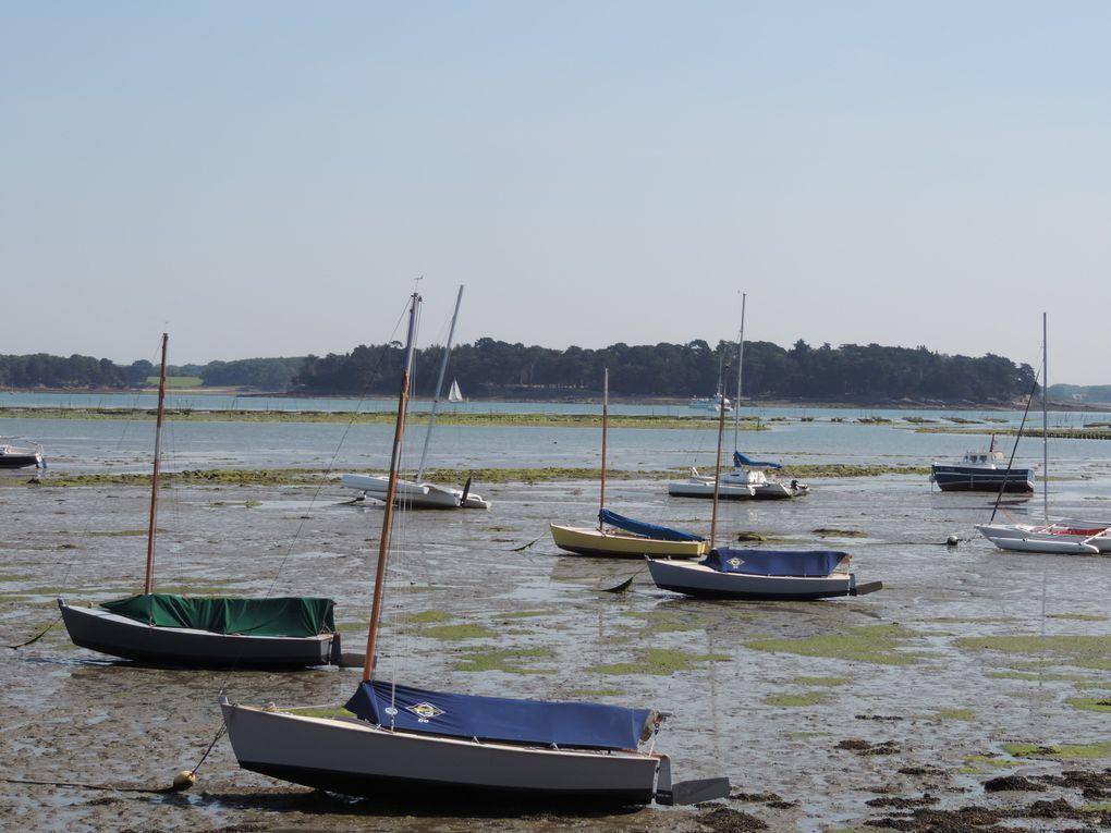 Le port et la côte à Locmariaquer