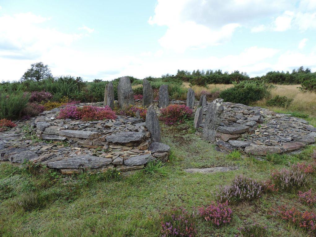 Allée couverte (2 photos), divers menhirs, tumulus, alignement