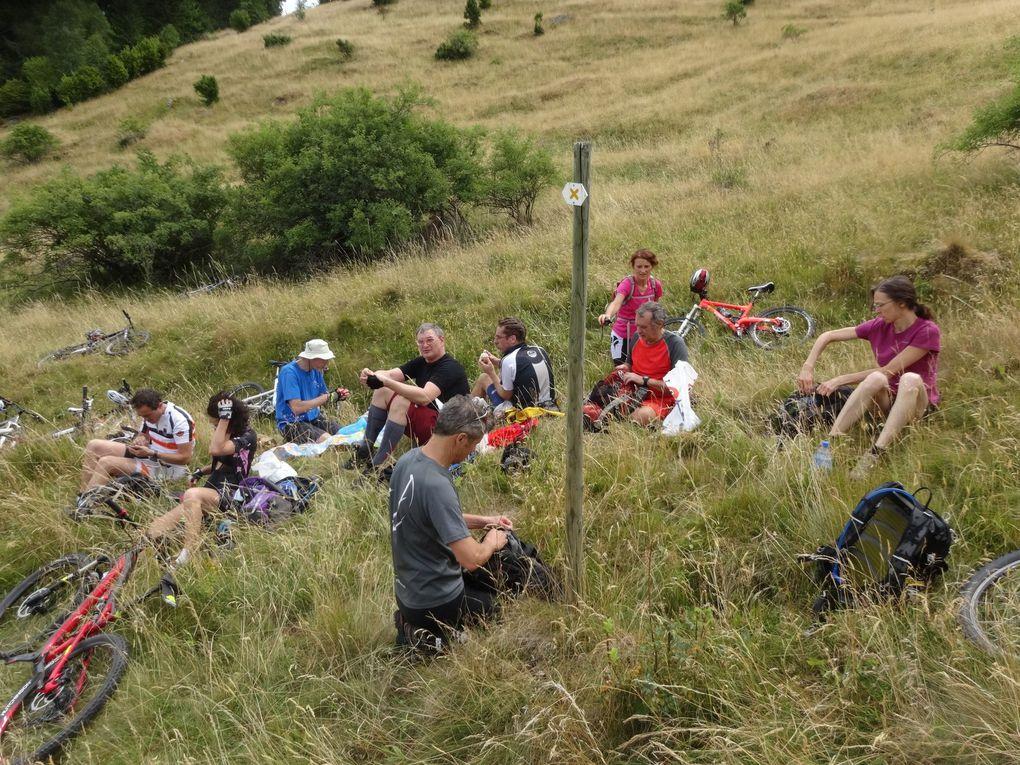 pause déjeuner sur l'herbe, enfin... dans les hautes herbes :)