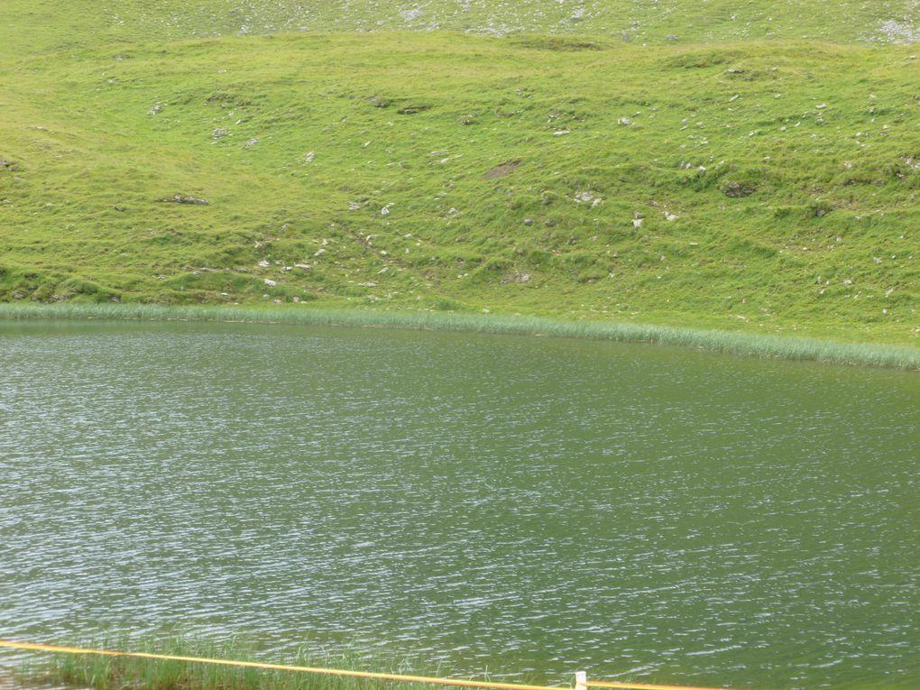 col après la montée&#x3B; arrivée de POC&#x3B; on repart direction le lac (on ne reverra plus POC qui bifurquera avant)