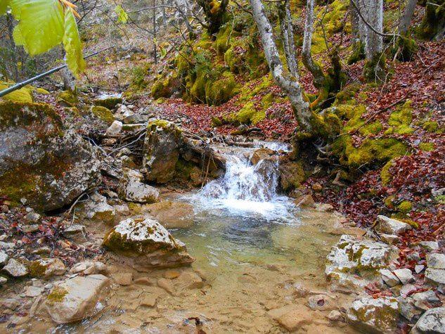 Le jolie ruisseau mort !!!!