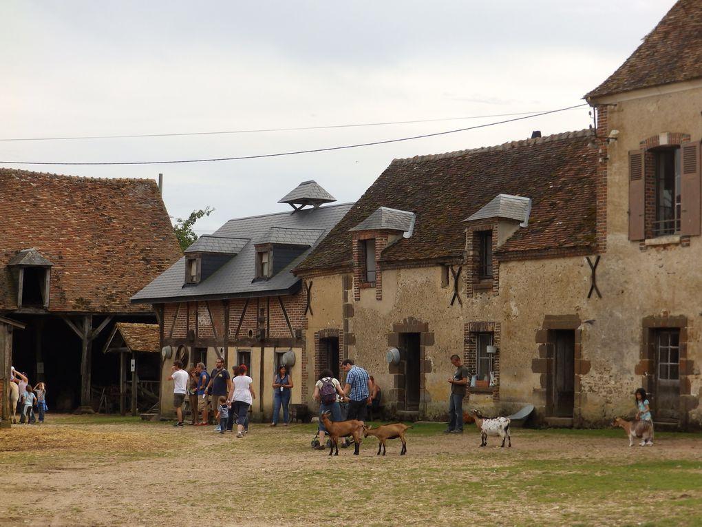 A la ferme de Saint Fargeau