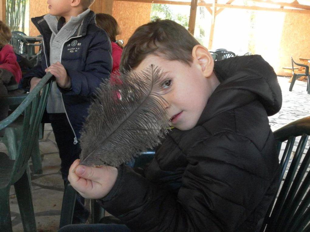 Sortie au Zoo de Bordeaux-Pessac pour les maternelles