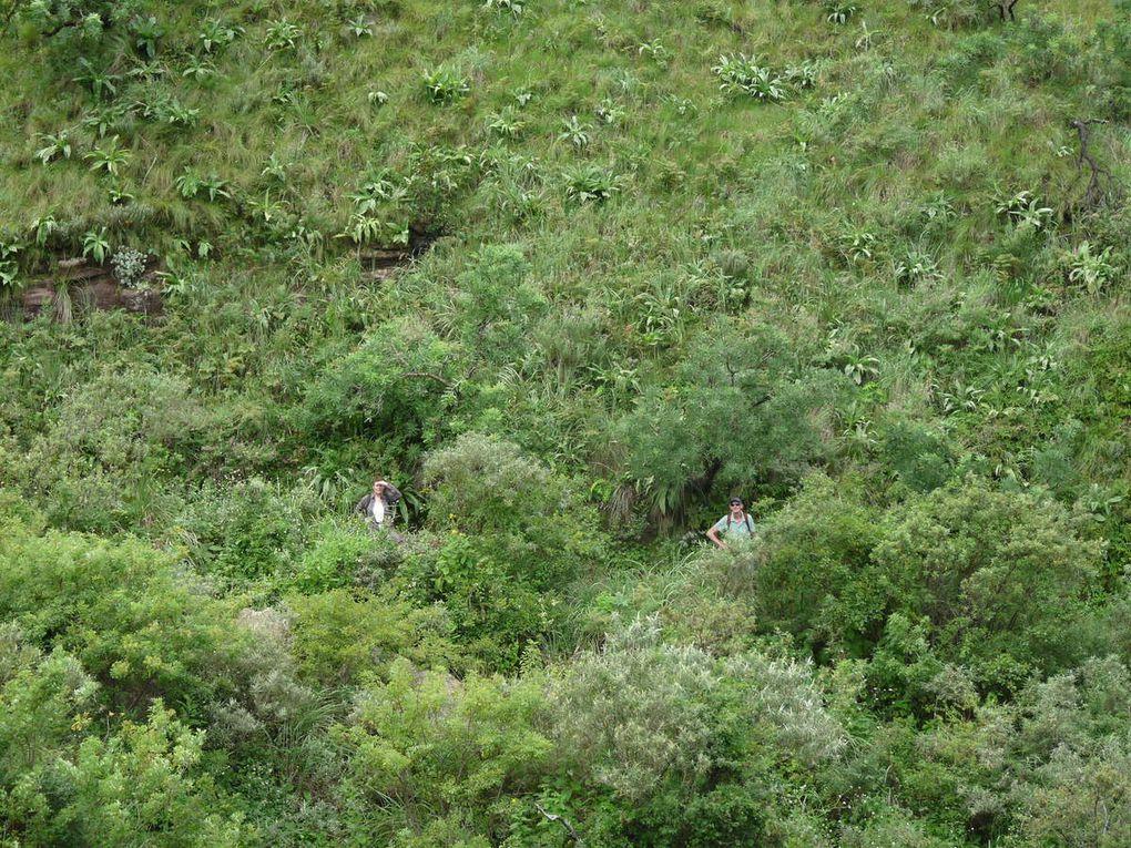 Afrique du Sud : le Drakensberg