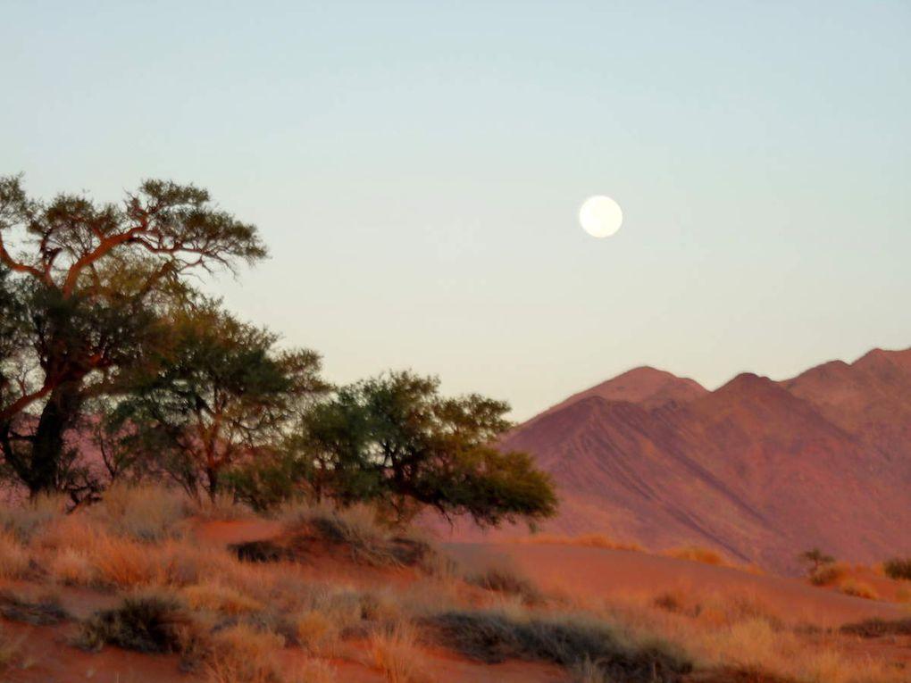 La Namibie c'est nami...bien !