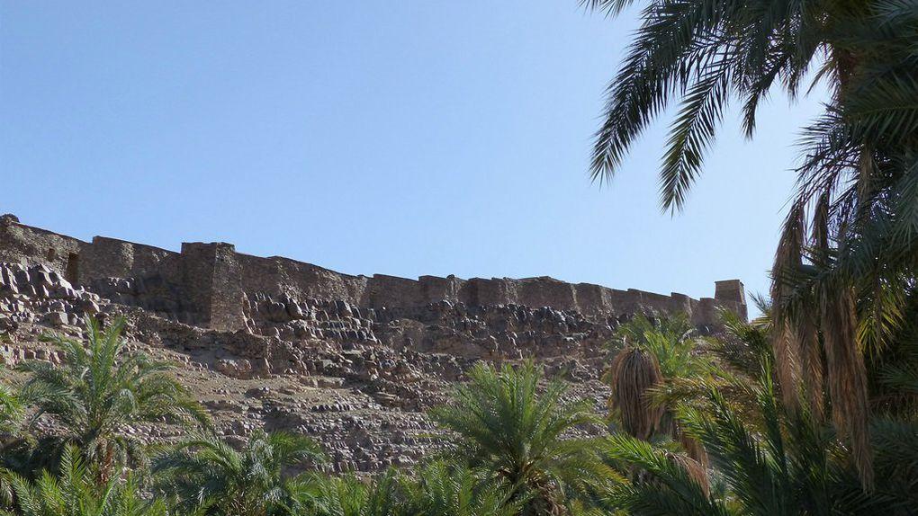 Le vieux ksar d'Assa et la palmeraie.