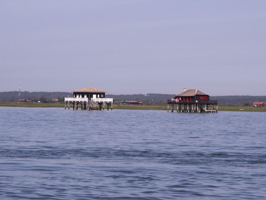 Sur le Bassin d'Arcachon