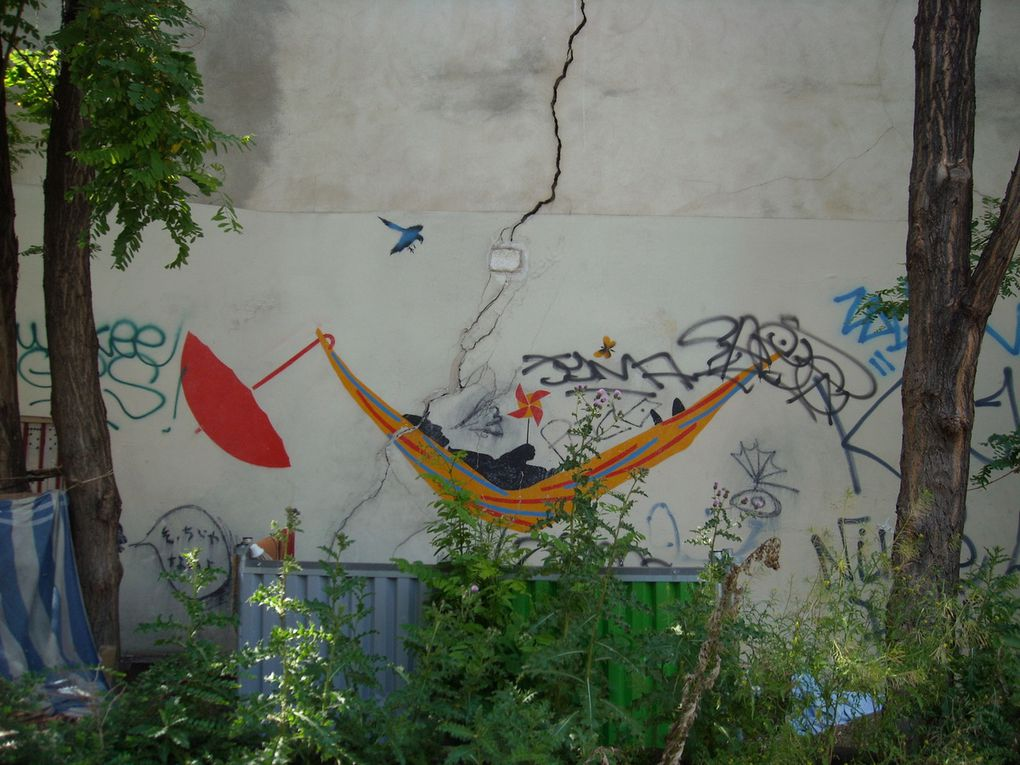 Némo - Paris 20e