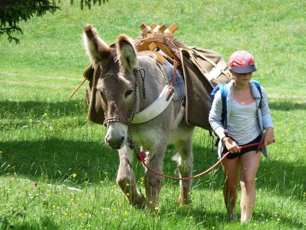 A pieds, à cheval, à VTT 5 Juillet, Marlioz! ...