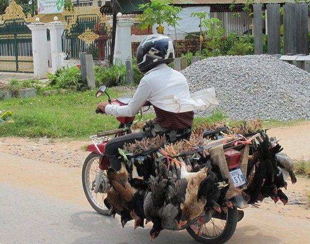 L'utilisation des motos en Asie.