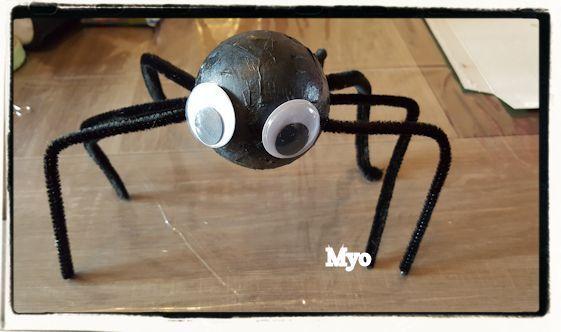 Les araignées !