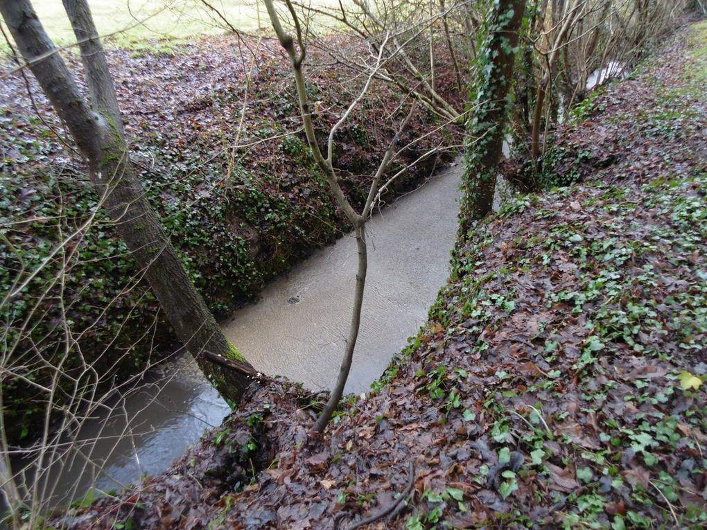 La rivière le Rhodon forêt de Port-Royal et communes de Saint-Lambert-des-Bois et de Milon-la-Chapelle, photos prises du 16 janvier au 2 mars 2017, un égout à ciel ouvert dans le Parc Naturel Régional de la Haute Vallée de Chevreuse.