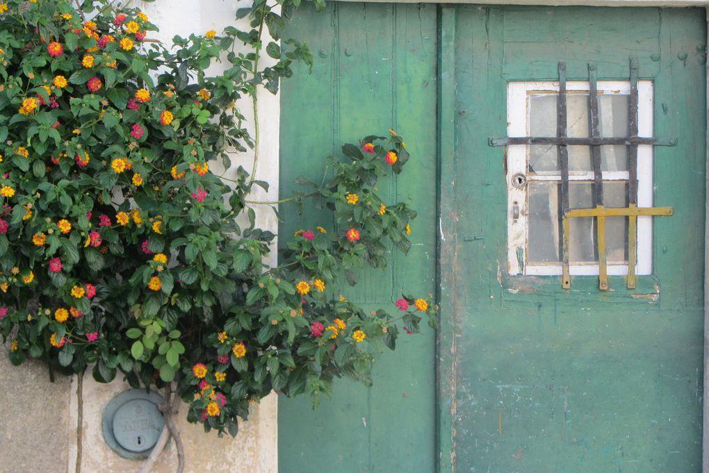 Ruelles fleuries de Castelo de Vide ( Portugal )