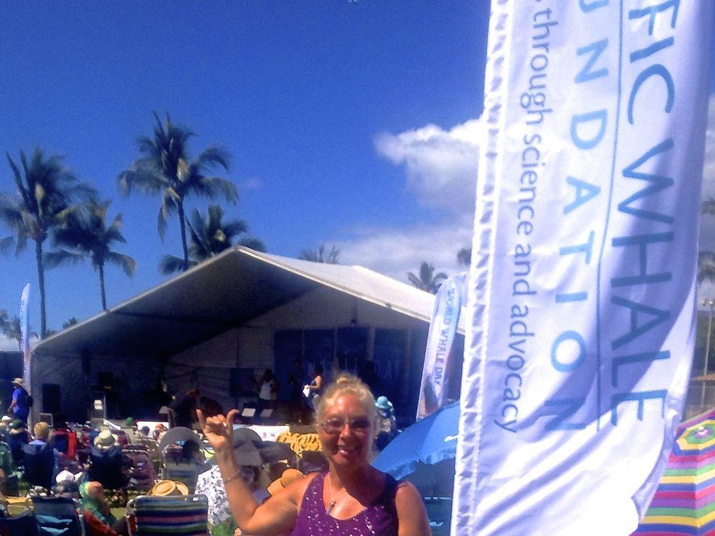 World Whale Day 2016, Maui, Hawaii