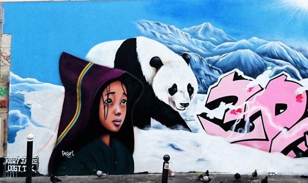Balade street art dans le quartier d'Oberkampf