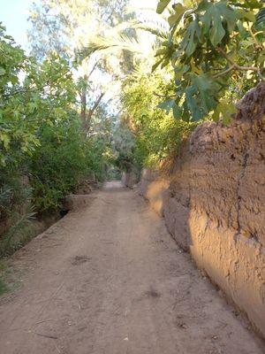 Promenade dans la Casbah Caid-Ali, son jardin, la palmeraie...