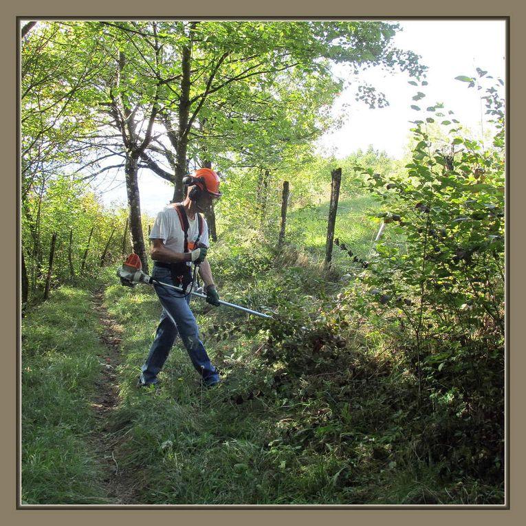 Le Patrimoine, les Chemins de Traverse et l'Association Pédestre de St Pierre d'Albigny