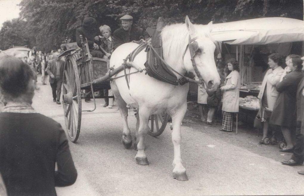 Les foires à l'ancienne organisée en 1973 et 1976 à Sainte-Anne de Champfrémont