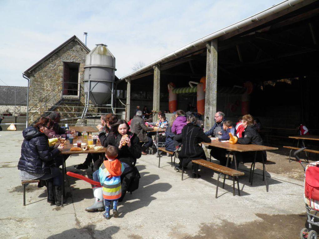 Au GAEC Carré d'Ouailles, élevage de brebis à Chantrigné