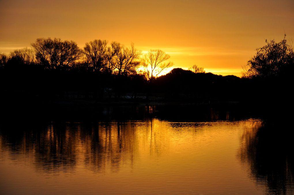 Le Canigou, le soleil, le lac, des oiseaux. Enfin tout ce que j'aime.
