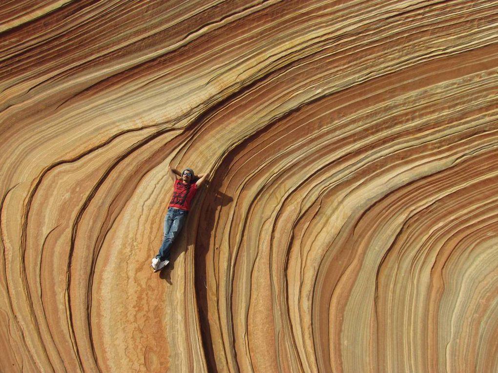 Coyotte Buttes (The Wave)