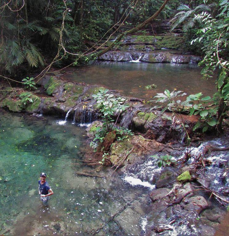 Palenque - Agua Azul - Misol-Ha
