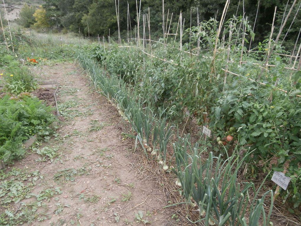 nature et jardin potager