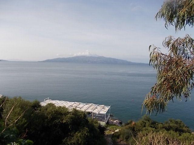 """parc national de Butrint, Sarandë , synagogue, mosquée,  la poste  et promenade long de la plage. A noter un """"ancêtre """" 167 BC  Aemilius Paulus"""