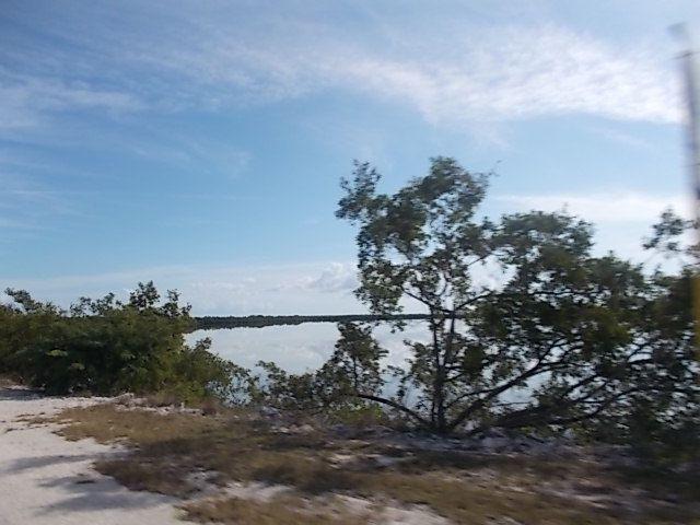 Moron, digue pour Cayo coco, playa el Pilar, laguna la Redonda, playa los flamencos , laguna el leche, vie a Moron, banda du dimanche matin, la polyclinique de Moron et son Che, les champs immenses de cana entre Moron et Ciego de Avila