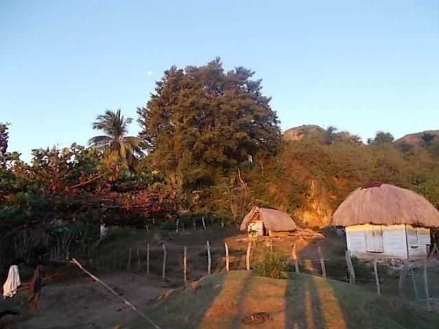 lever de soleil sur mogote, la maison de Marisol et le side, malanga petit dej et vin local..et la belle americaine, El Pollo et son beau pere qui tri la production familiale de riz
