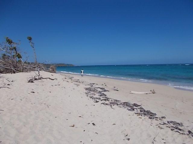 plage, poisson au repas, le Yunque, fete poour la naissance 164 ans de Jose Marti..
