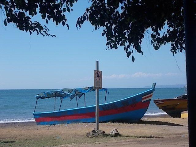 élevage, crocodiles, le ferry, le parc Marco Antonio, Cartago, le volcan Irazu et des fruits avec leurs noms locaux.