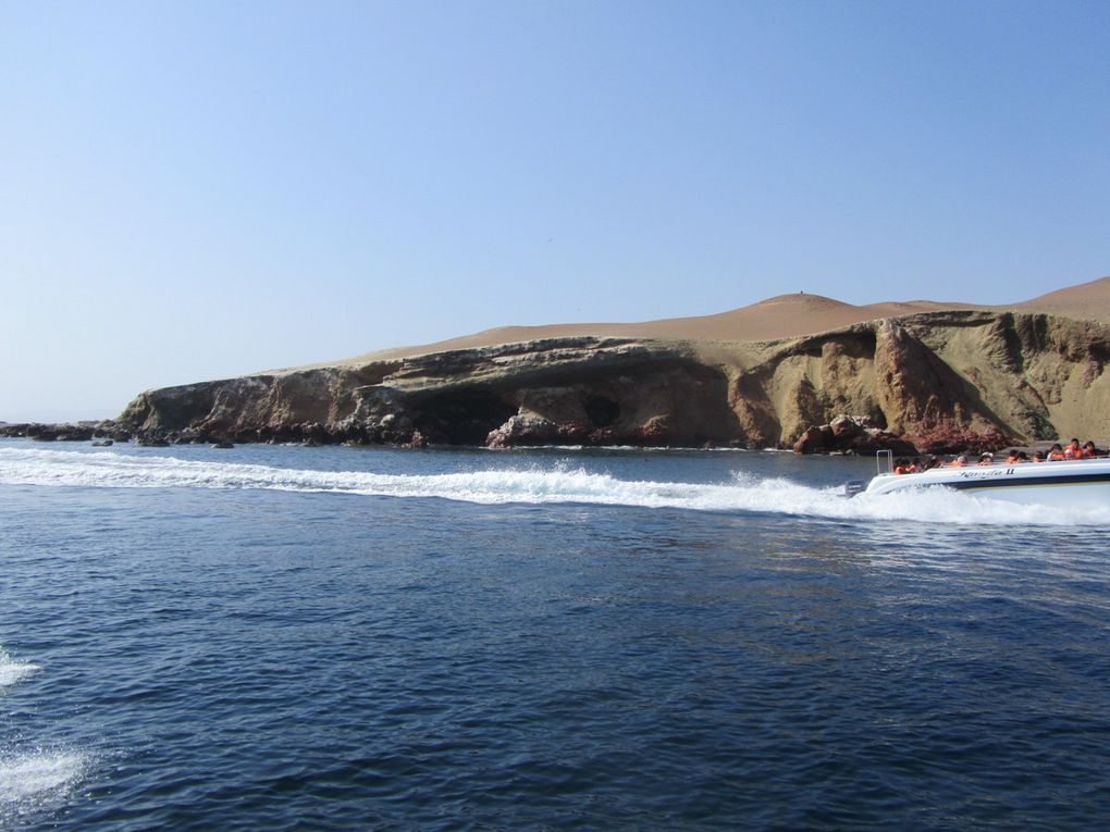 """les iles Ballestas, le guano, les fous de bassan, le cormoran a pattes rouge en voie d'extinction, les piqueros, les sarcelles, les différentes mouettes, et tant d'autres oiseaux,  les otaries, les lions de mer, les plages de  la réserve&#x3B; les plats : ceviche , chaufa , sudado, picante.....de marisco y pescado....pelicans péruviens et la """"cathédrale"""""""