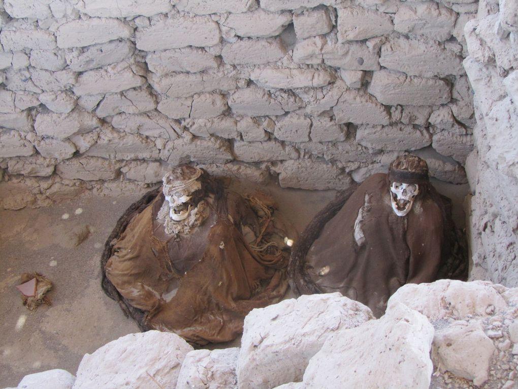 momies des civilisations nasca wari et icachincha, certaines chevelures atteignent plus de 2m, signe de pouvoir et de richesse, on décapitait les bébés pour les offrir......