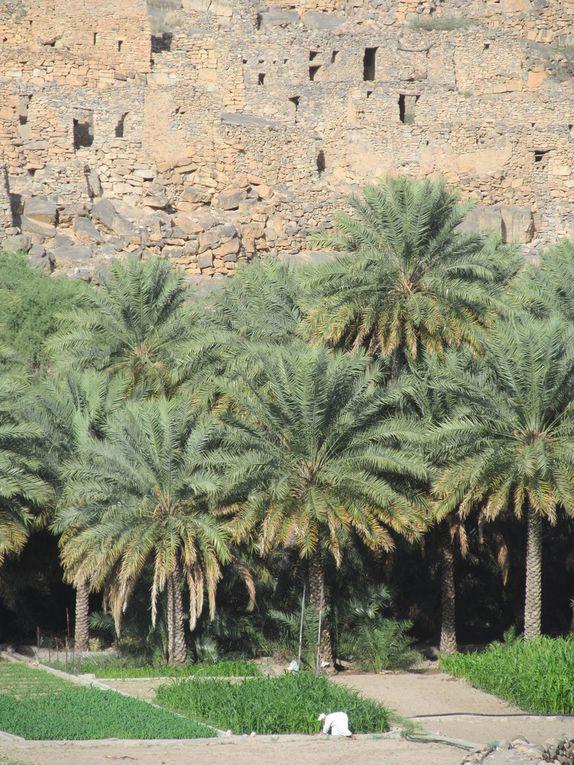 UAE/Oman, saison 5, épisode 1.