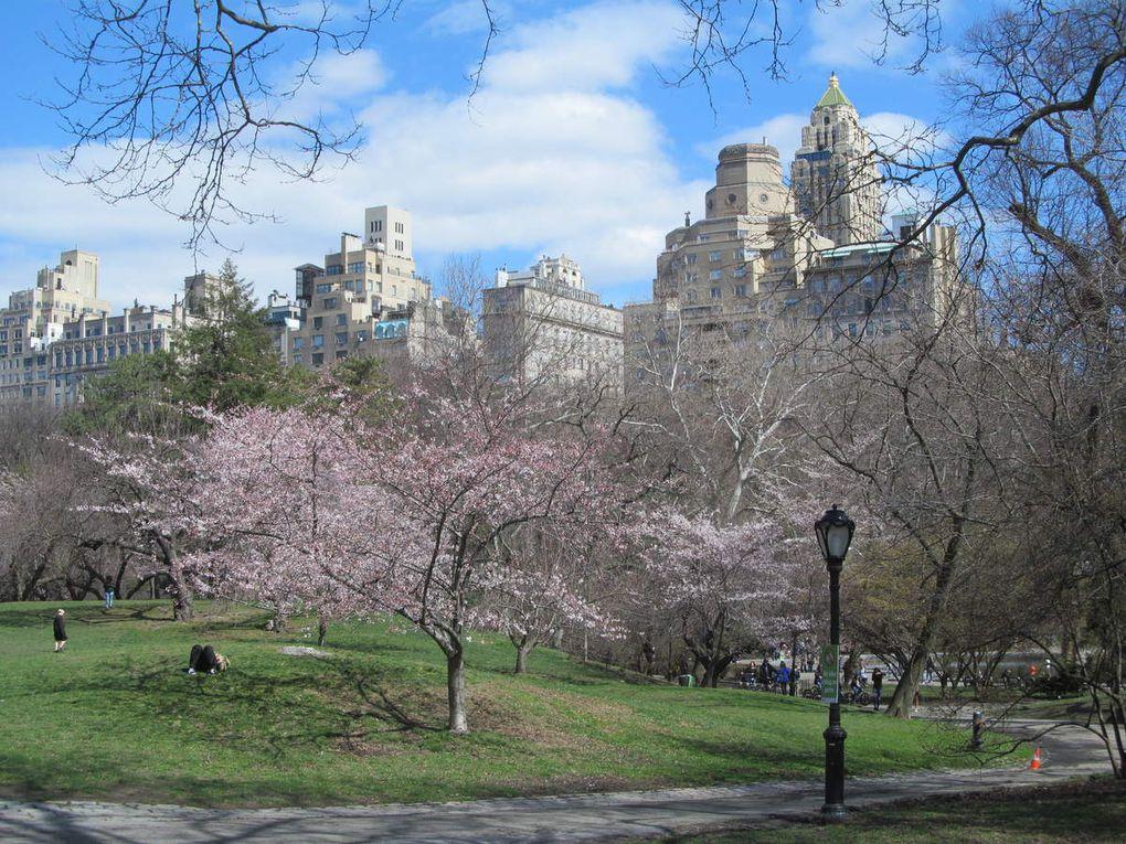 Brooklyn, Manhattan…et Philly