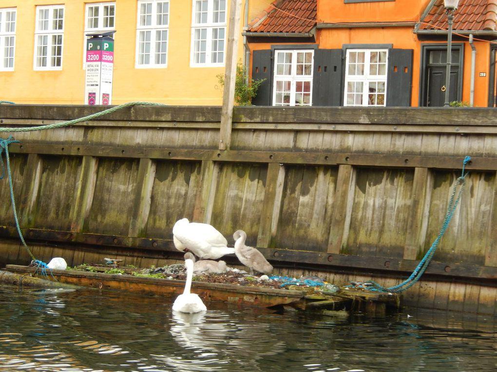 Journée pluvieuse à Copenhague
