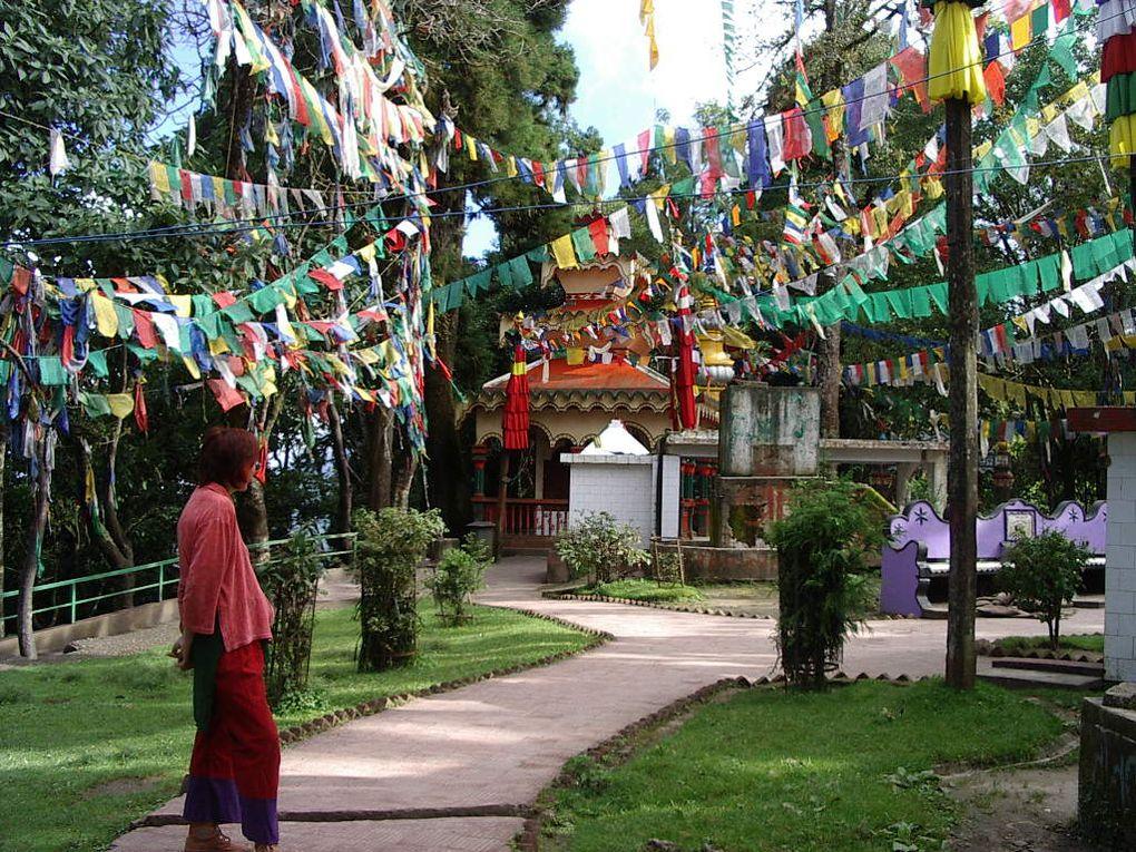 DARJEELING, Ville du thé et des réfugiés Tibétains, au pied de l'Himalaya.