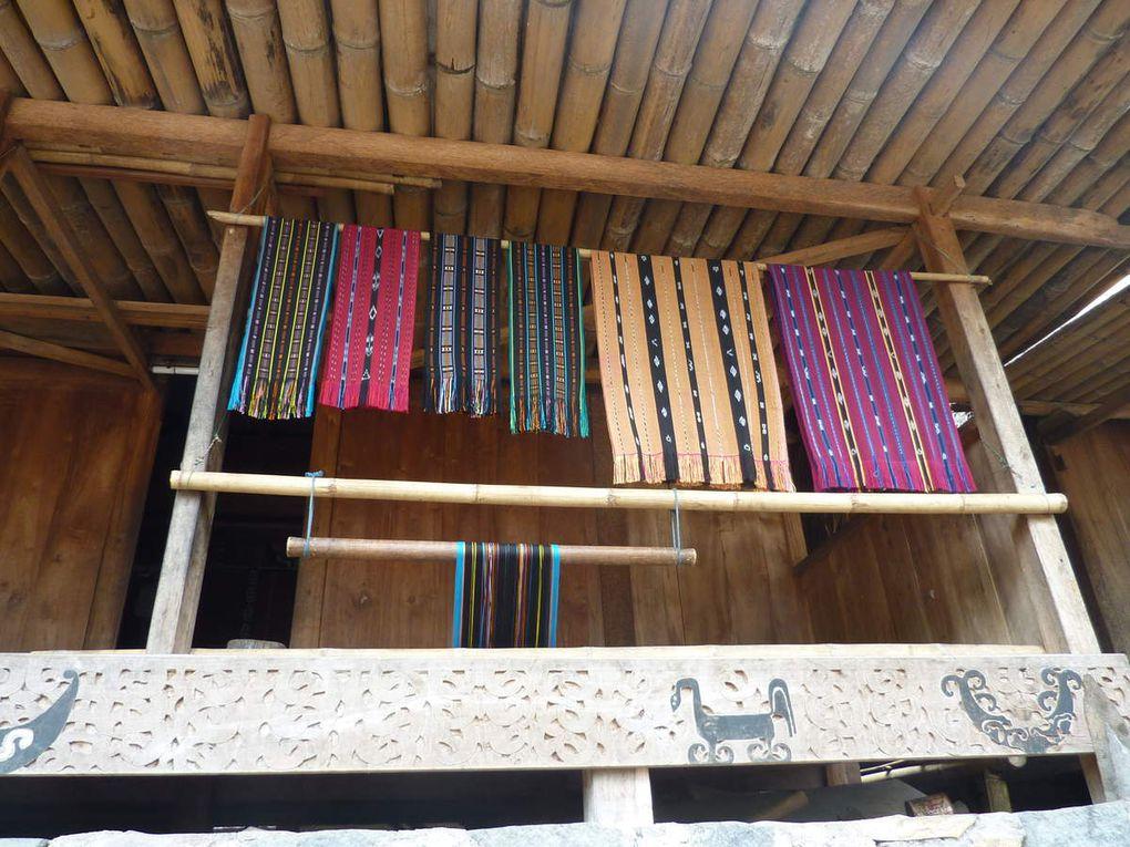 FLORES Bena et la Tribu Ngada
