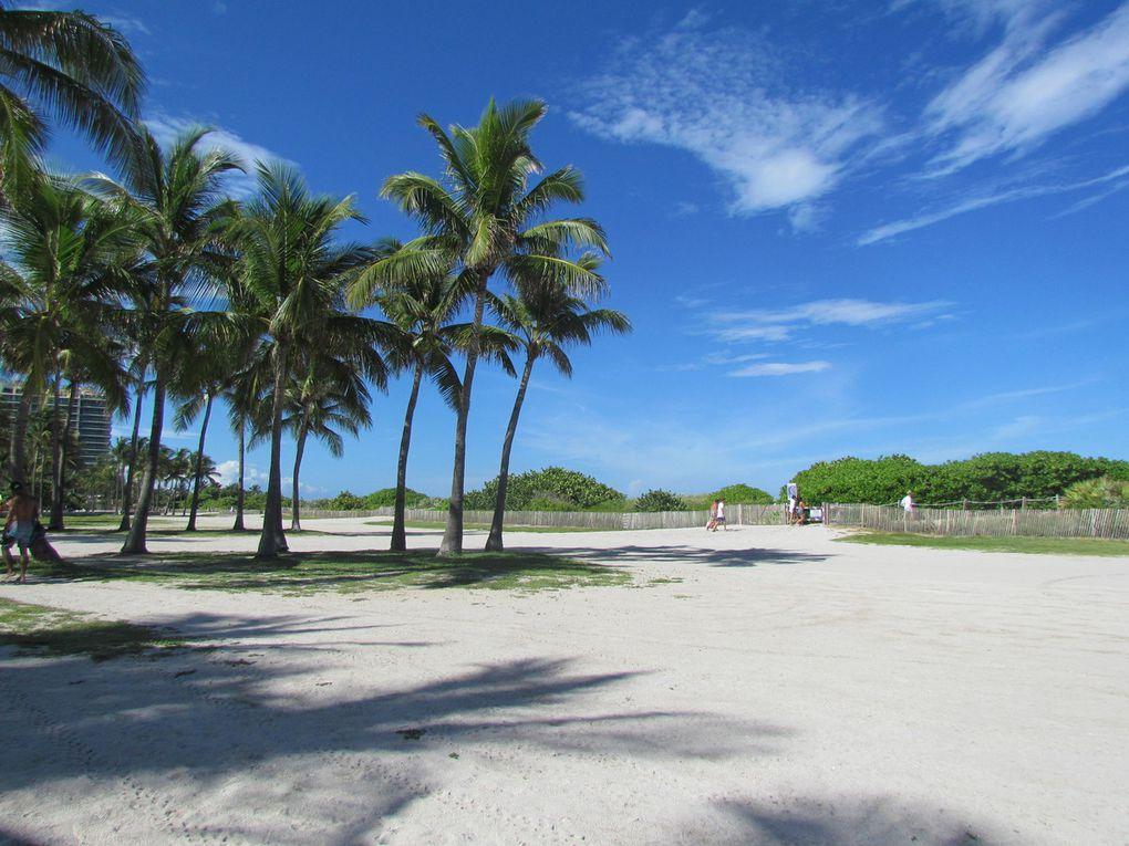 Miamiiiii