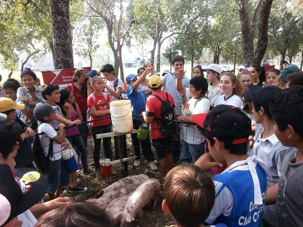 MÁS DE 800 ESTUDIANTES VISITARON EL INTA DE LAS BREÑAS