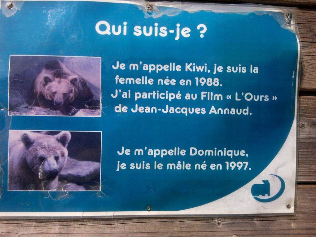 Manifestation pour les ours du zoo de Fort-Mardyck