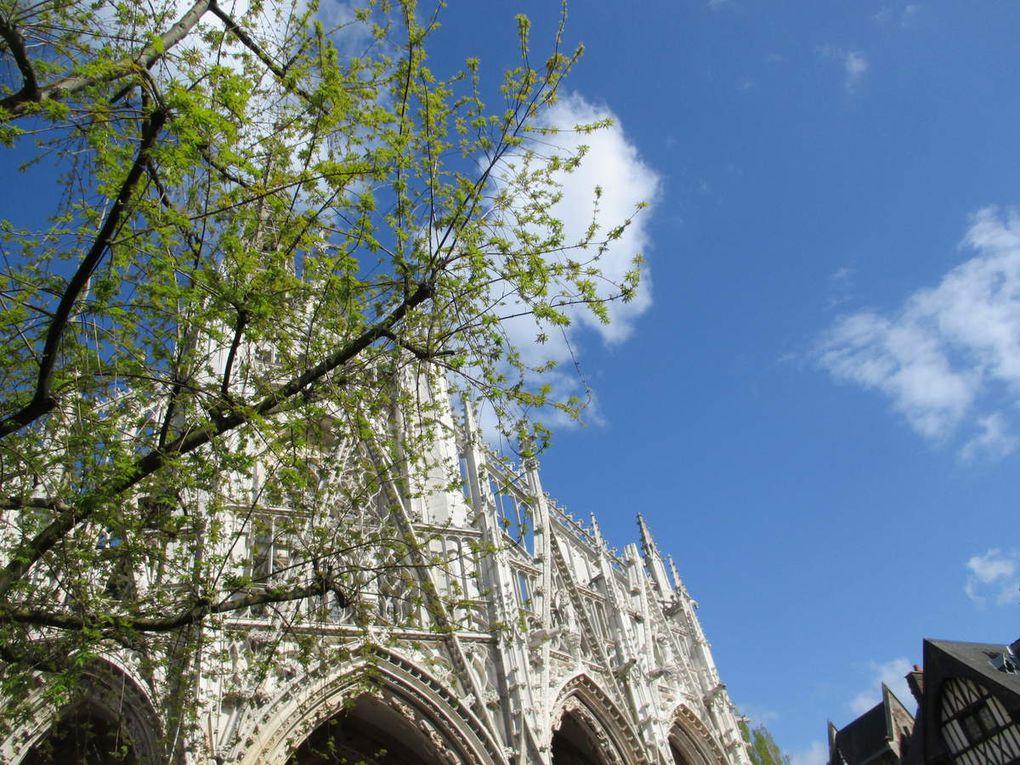 """Photos 1 à 7 @Véronique Romance. En ville, maisons à colombages (Ph1). En musique, un petit concert dans la rue, les musiciens jouent """"la foule"""" d'Edith Piaf (Ph2). Très beaux ! ces arbres en fleurs en plein centre ville de Rouen (Ph3,6). Comme elle est belle la cathédrale de Rouen sous le beau ciel bleu (Ph4). Cathédrale, et là """"l'entrée des libraires"""" (Ph 5). Sur le bord de la seine, dimanche un beau voilier m'attendait... (Ph 7)."""