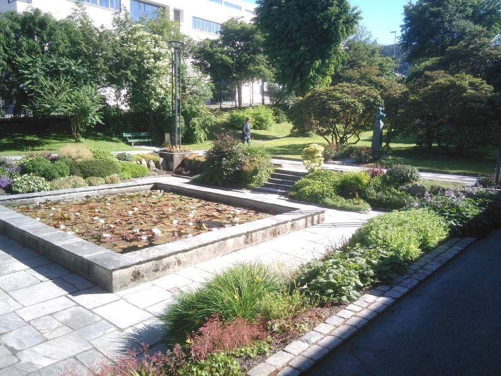 Et pour ces photos-là (faites défiler), je suis passé par ce jardin botanique que j'ai évoqué au dernier article, jardin qui est tout autour d'un musée. Désolé pour les couleurs, ce beau soleil n'était pas vraiment en faveur de mes photos... Le monsieur dont on trouve le buste est le docteur Gerhard Armauer Hensen (né à Bergen, lui aussi), spécialisé dans le domaine de la lèpre.