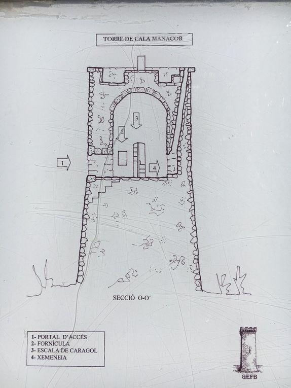 La Torre dels Falcons, Porto Cristo