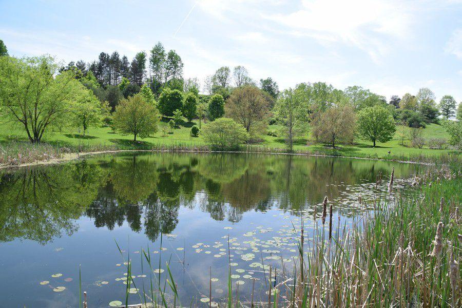 FR Newman Arboretum
